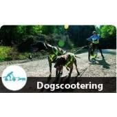 Gruppen-Einsteigerkurs Dogscootering/ Bikjöring/Canicross